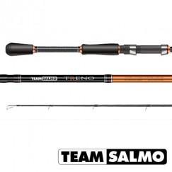 Спиннинг TEAM SALMO TRENO 2,31м, тест 4-18 г, графит 40Т