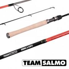 Спиннинг Team Salmo BALLIST 5.90/ML-TSBA1-591F,штеккерный, 5.9/1.80 м, тест: 3-12 г , 98 г