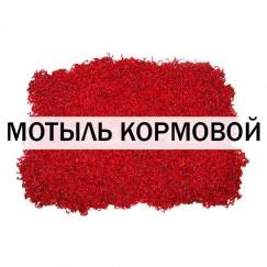 Мотыль лиманник / кормовой (100 гр)
