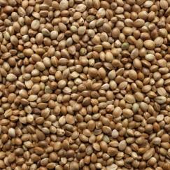 Компонент для прикормки Vabik PRO Зерно конопли 150 г